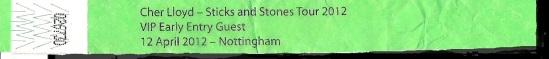 myblogaboutcherlloydcom 120412 Nottingham Wristband (2) Shadow
